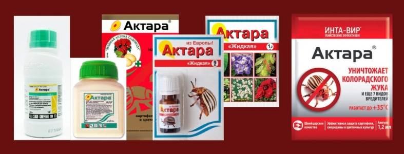 Инсектицид актара: принцип действия, приготовление раствора, инструкция по применению для садовых, огородных, комнатных растений, орхидей, отзывы