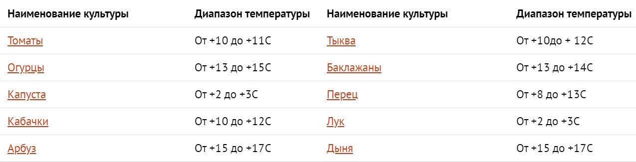 Температурный режим для рассады