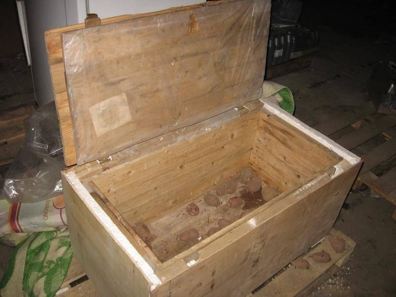 Ящик для картофеля своими руками. ящик для хранения картофеля на балконе и в подвале своими руками   зелёный сад