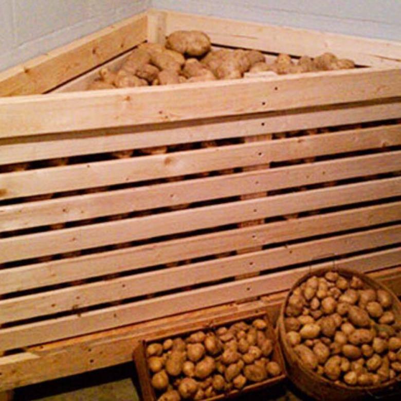 Ящик для хранения картошки своими руками. ящик для хранения картофеля на балконе и в подвале своими руками