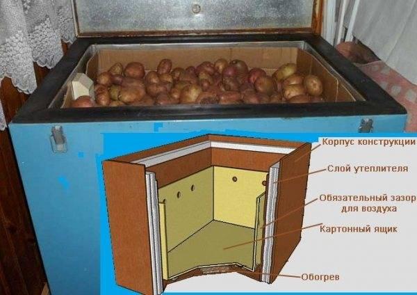 Хранение картофеля в ящике: что нужно знать, чтобы овощи надолго оставались свежими, вкусными и полезными?