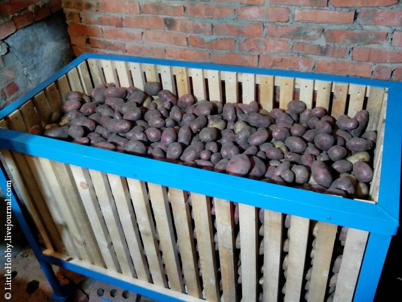 Для хранения картошки ящик. как сделать ящик для хранения картофеля на балконе