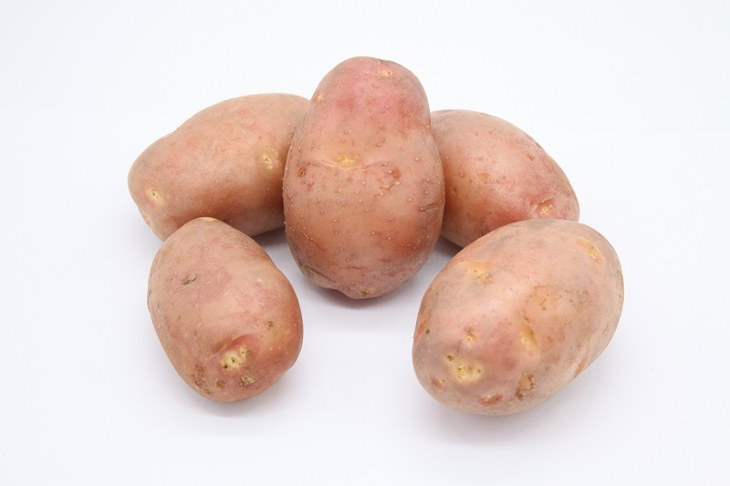 Сорта картофеля: названия, описание и фото разновидностей, их характеристика