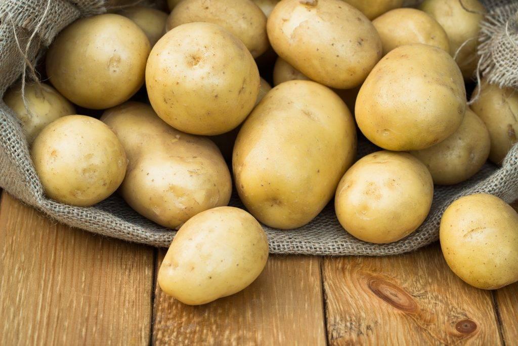 Лучшие сорта картофеля для посадки в 2020 году - курьер.среда.бердск