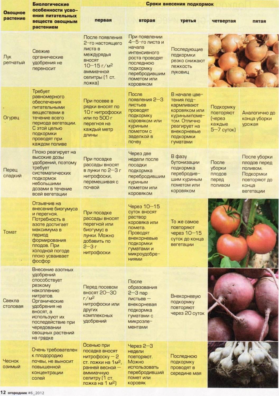 Какие удобрения вносить при посадке помидор?