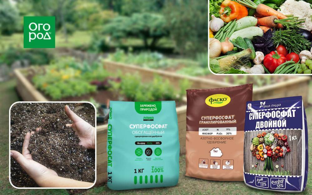 фосфат калия удобрение применение на огороде