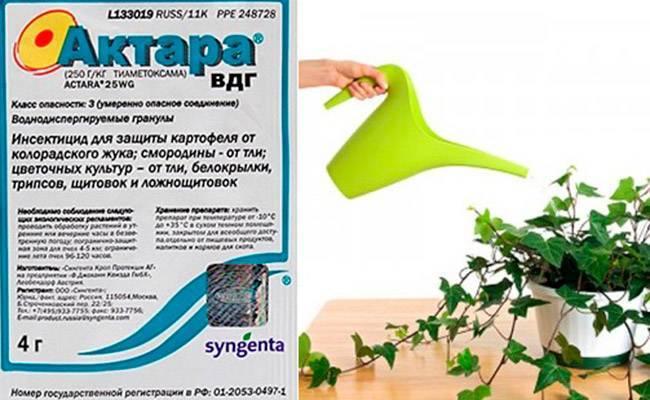 Инсектицид актара – инструкция по применению препарата